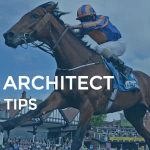 architect tips review