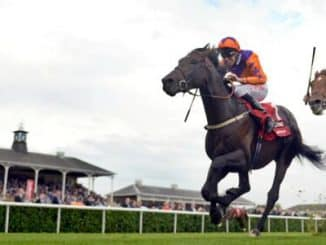 Monday 18th June Free Horse Racing Tips