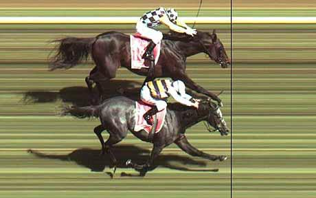 horse racing photo finish