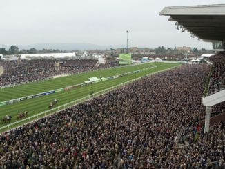 Different odds available for the Cheltenham horse racing festival