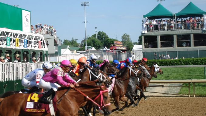 Plans Drawn Up For Kentucky Derby Contenders Horse
