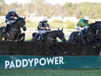 Champion Hurdle Predictions