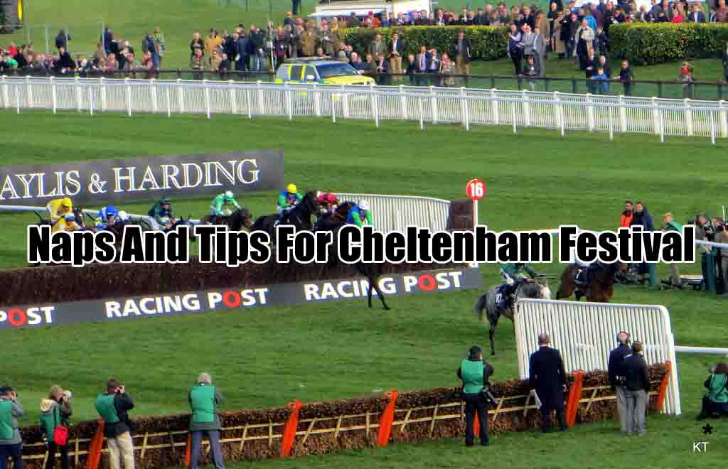 cheltenham naps and tips