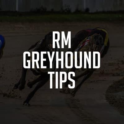 RMGreyhoundSmall