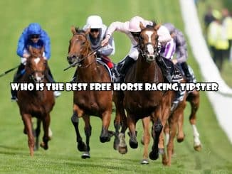Who is the best free horse racing tipster