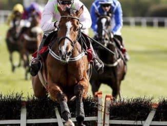 most popular horse betting markets