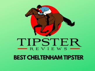 Who Is The Best Cheltenham Tipster