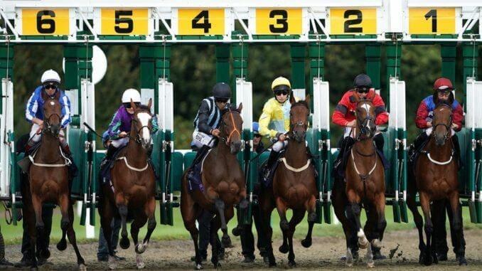 Horse Betting