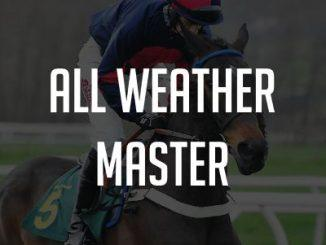 all weather master review