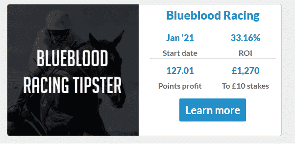 blueblood racing tipster review
