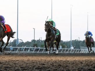 Horse Racing In Pennsylvania
