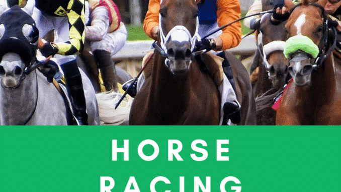 Horse Racing Tipster Reviews